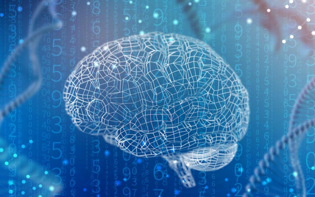 La importancia de la neurociencia en el liderazgo